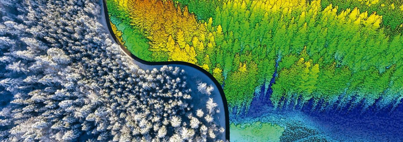 Curso LIDAR Forestal